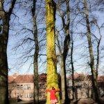 Around Bruges 8