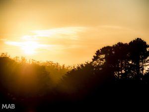 Another San Fran Sunset